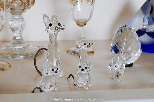 Chats en verre