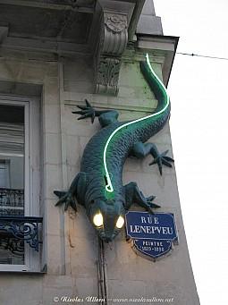 Angers, le Lézard Vert